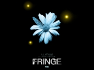 fringe_wallpaper_6