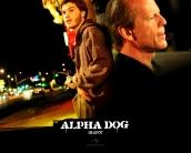 alpha_dog_wallpaper_12