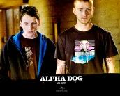 alpha_dog_wallpaper_3