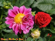 motherday_wallpaper_20