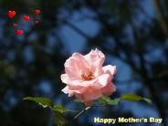 motherday_wallpaper_38