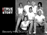 beverly_hills_90210_wallpaper_1