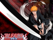 bleach_wallpapers_79