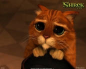 shrek_the_third_wallpaper_22