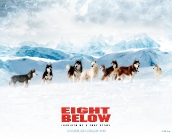 eight_below_wallpaper_1