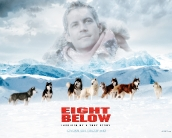 eight_below_wallpaper_10