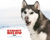 eight_below_wallpaper_2