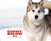 eight_below_wallpaper_3