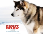 eight_below_wallpaper_4