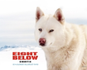 eight_below_wallpaper_5