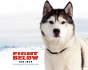 eight_below_wallpaper_7