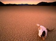 desert_wallpaper_07