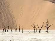 desert_wallpaper_11