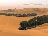 desert_wallpaper_16