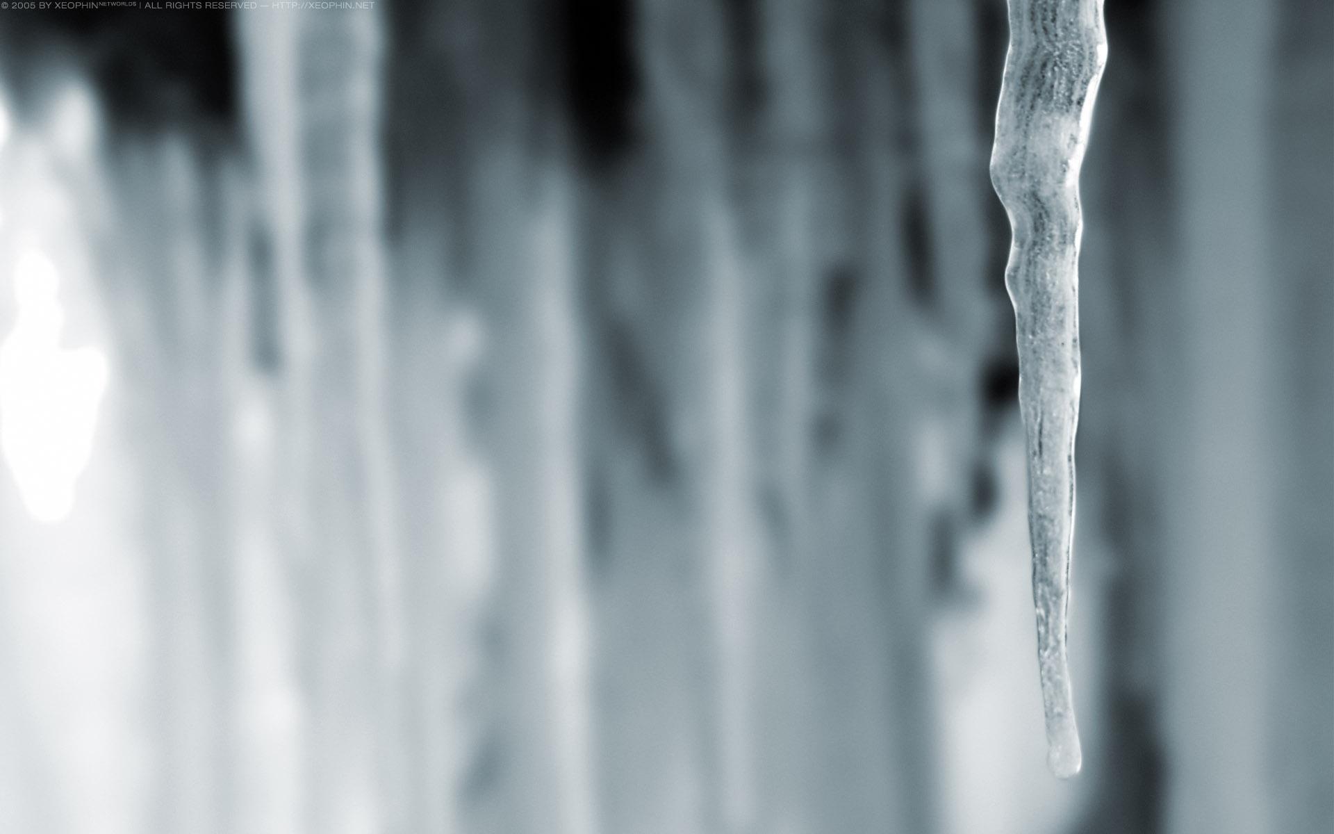 Winter's Greetings