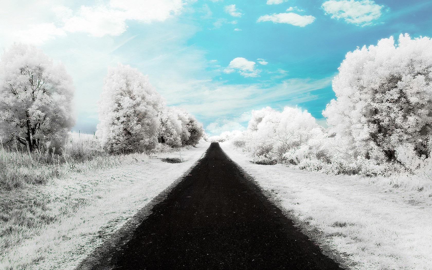 teli_winter_hatterkepek_119