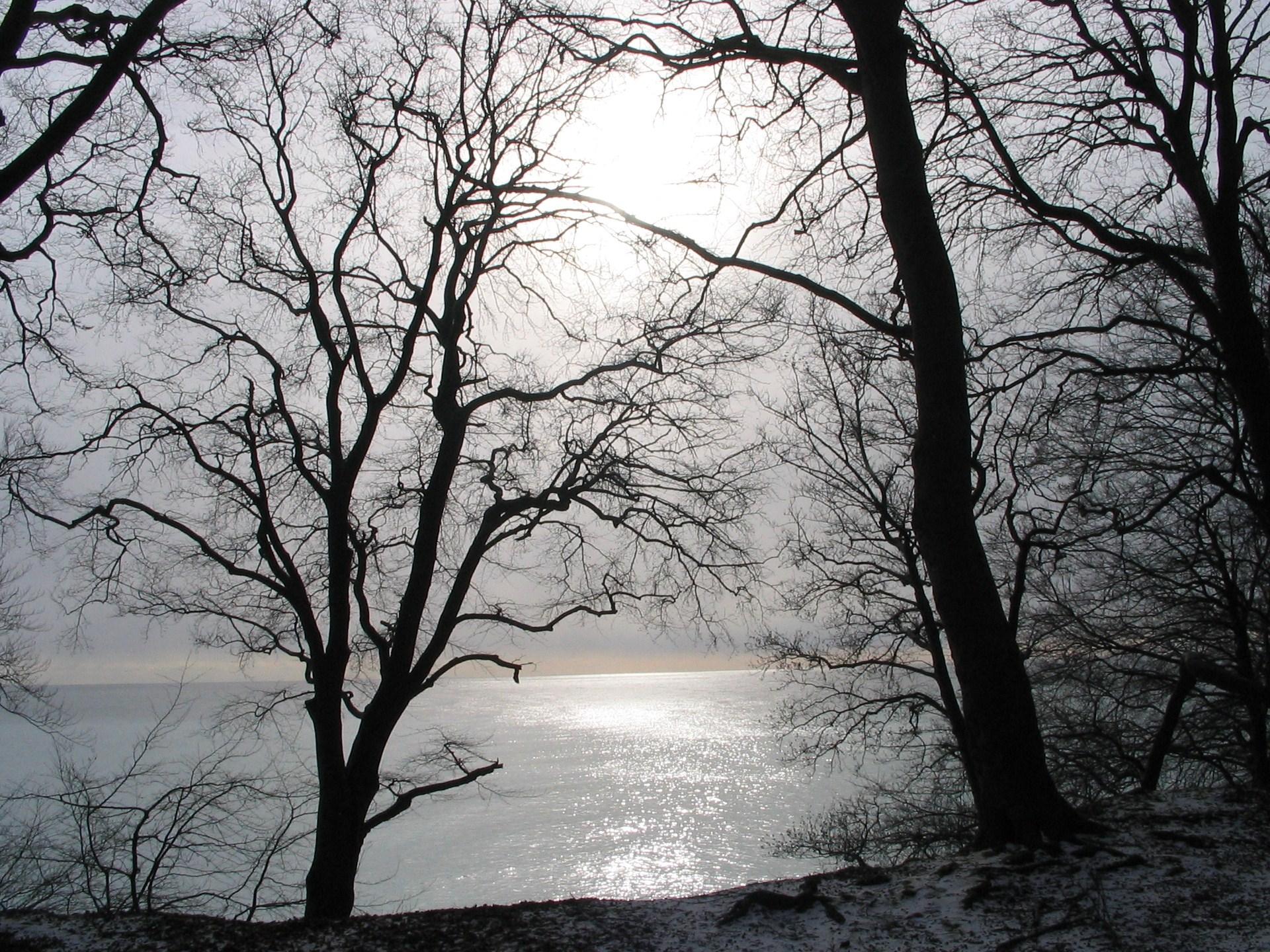 teli_winter_hatterkepek_123