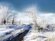 teli_winter_hatterkepek_27