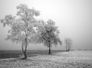 teli_winter_hatterkepek_31