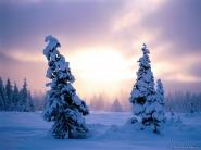 teli_winter_hatterkepek_52