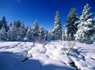 teli_winter_hatterkepek_53