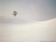 teli_winter_hatterkepek_59