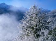 teli_winter_hatterkepek_71