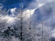 teli_winter_hatterkepek_76