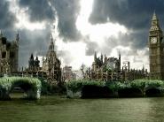 LondonRegrown