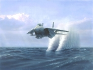 fighter over water