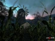 cornfield-windmill-1600
