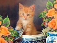cat_wallpaper_10